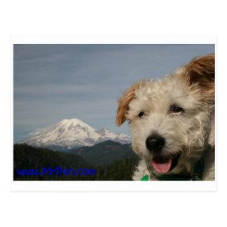 Mr. Pish Visits Mt. Rainier Postcard
