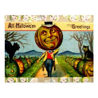 Mr. Pumpkin(Vintage Halloween Card) Postcard