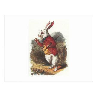 Mr Rabbit! Postcard