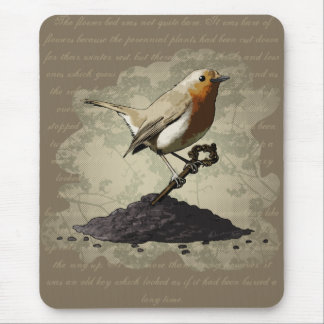Mr. Robin Finds the Key, mousepad