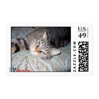 Mr. Rogers paisley Postage