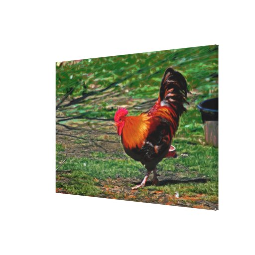 """""""Mr Rooster's Waltz"""" Oil Painting Wrapped Canvas Stretched Canvas Prints"""