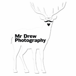Mr Sculpture