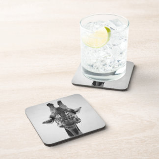 Mr. Serious Giraffe Black and White Photography Drink Coaster