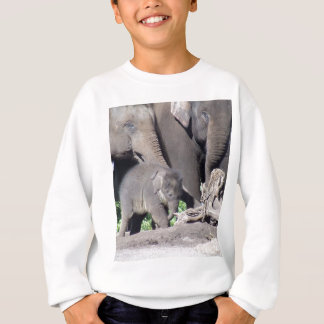 Mr Shuffles and family Sweatshirt