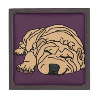 Mr Squishy the Shar-pei Puppy Jewelry Box