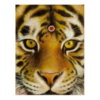 Mr Tiger Postcard