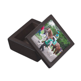 Mr. Z in the 100th Sanford Stakes Jewelry Box