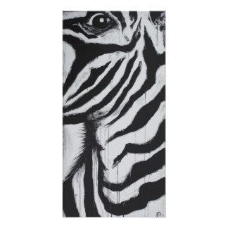 Mr. Zebra Wildlife African Plains Original Art Photo Print