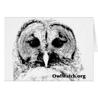 Mrs Barred Owl - Mar 2015 Greeting Card