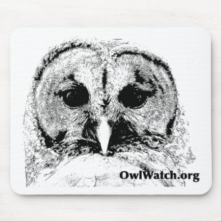 Mrs Barred Owl - Mar 2015 Mouse Pad