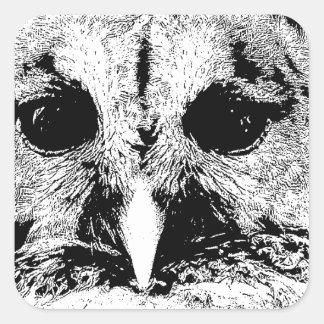 Mrs Barred Owl - Mar 2015 Square Sticker