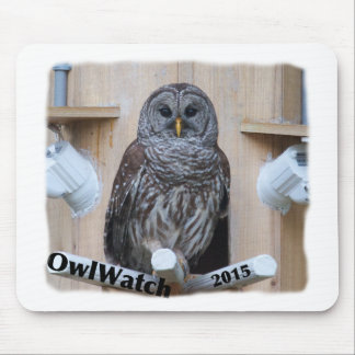 Mrs Barred Owl - OctoBox Nest Mouse Pad
