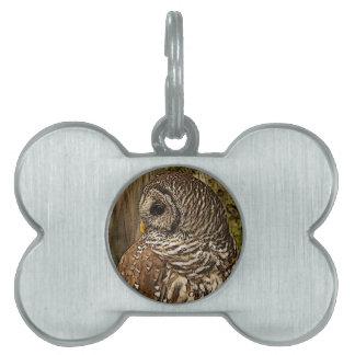 Mrs Barred Owl Pet ID Tags