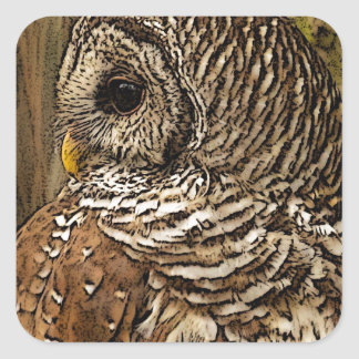 Mrs Barred Owl Square Sticker