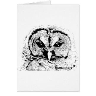 Mrs Owl Mar2015 - Black on White Greeting Card