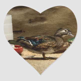 Mrs. Wood Duck Heart Sticker