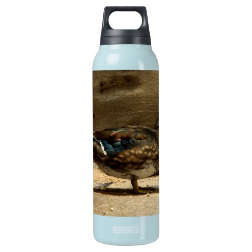 Mrs. Wood Duck Insulated Water Bottle