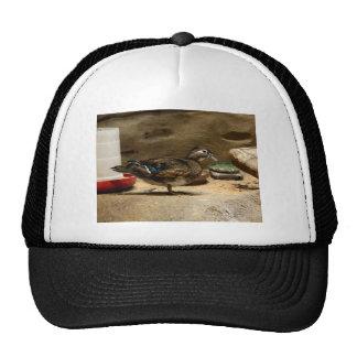 Mrs. Wood Duck Trucker Hat