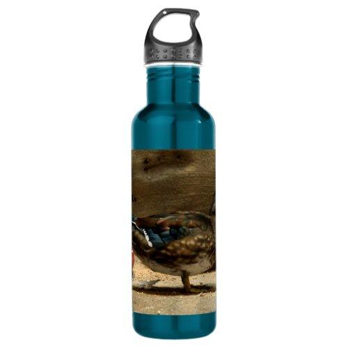 Mrs. Wood Duck Water Bottle