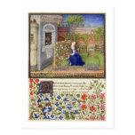 Ms 2617 Emilia in her garden, Plate 22, from 'La T Postcard