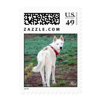 Ms Minnie Winkle Postage Stamp