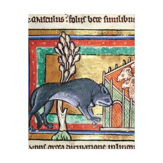 MS Roy A wolf outside a sheep fold Canvas Print