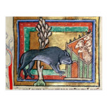 MS Roy A wolf outside a sheep fold Postcard