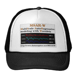 MSAR-W Logo Hat
