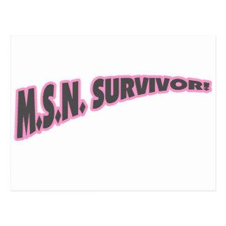 MSN Survivor In Pink Postcard