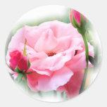 mst color de rosa 12 x 11 pegatina redonda