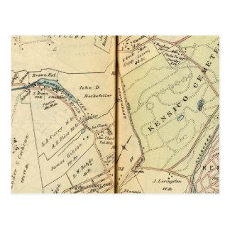 Mt. Agradable, Nueva York Tarjeta Postal