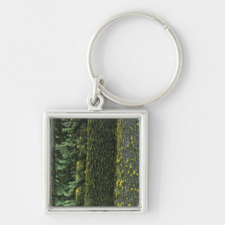 Mt. Ashland, Rogue RIver National Forest, Keychain