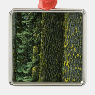 Mt. Ashland, Rogue RIver National Forest, Metal Ornament