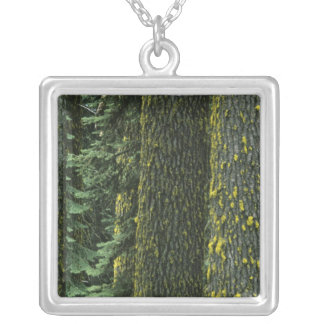 Mt. Ashland, Rogue RIver National Forest, Square Pendant Necklace