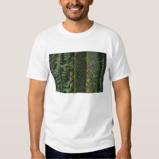 Mt. Ashland, Rogue RIver National Forest, T-Shirt