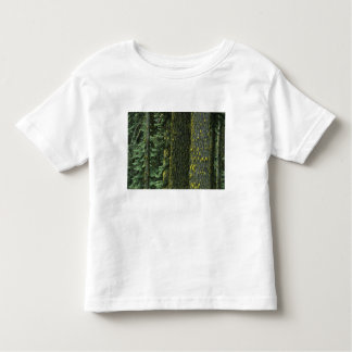 Mt. Ashland, Rogue RIver National Forest, Toddler T-shirt