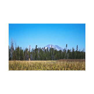 Mt Bachelor & Meadow Canvas Print
