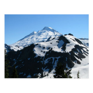Mt Baker In July Postcard