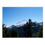 Mt Baker in Summer Postcards