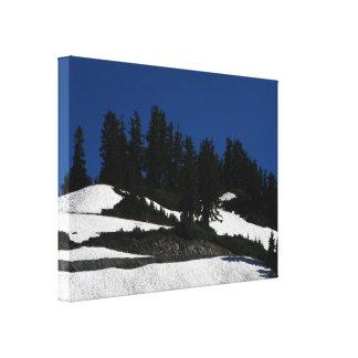 Mt Baker Summer Dusk Canvas Prints