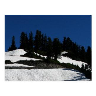 Mt Baker Summer Dusk Postcard