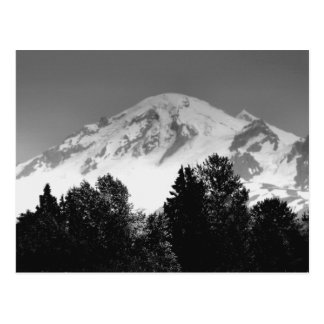 Mt. Baker Through Trees Postcard