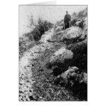 Mt. Carmel, trail near Shrine of the Bab ca. 1920 Greeting Cards