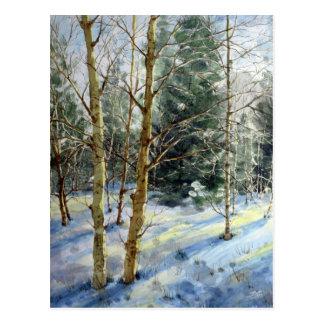 Mt Charleston trees in the snow Postcard