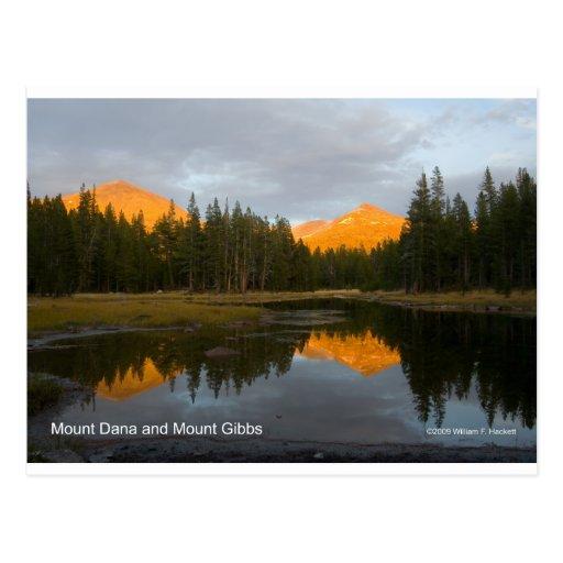 Mt Dana Mt Gibbs Yosemite California Products Postcard