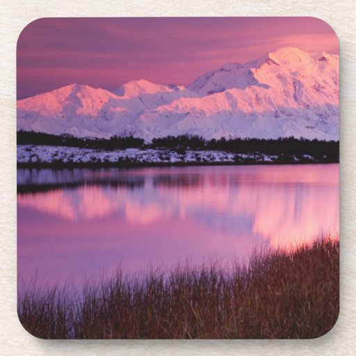 Mt. Denali at sunset from Reflection Pond Drink Coasters