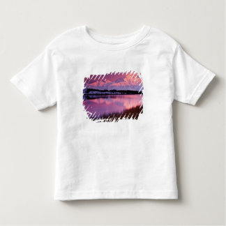 Mt. Denali at sunset from Reflection Pond Toddler T-shirt