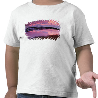 Mt Denali en la puesta del sol de la charca de la Camisetas