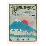 Mt. Fuji And Sun Vintage Japanese Silk Label Postcard